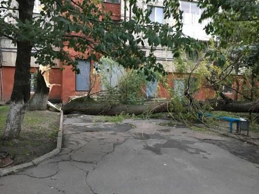 Сорванные крыши иповаленные деревья: появились фото страшных последствий бури вУкраинском государстве